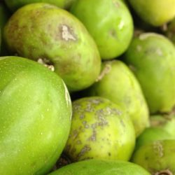 How to eat a Makok! Exotic fruit from the Caribbean